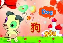 Characteristics of Dog