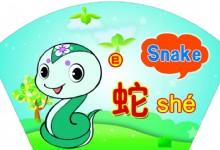 Characteristics of Snake