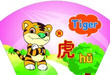 Characteristics of Tiger