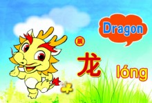 Characteristics of Dragon