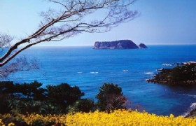 Jeju Golf 5 Days Tour