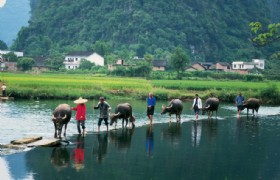 11-Day Beijing Xian Guilin Guangzhou Hong Kong Group Tour