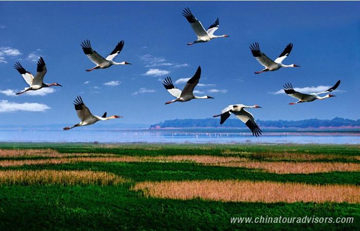 Poyang Lake