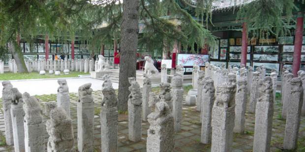 Xian Stele Forest