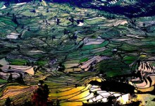 4 Days Jianshui and Yuanyang Rice Terraces Photo Tour