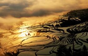 7 Days Kunming and Yuanyang Rice Terraces Muslim Tour