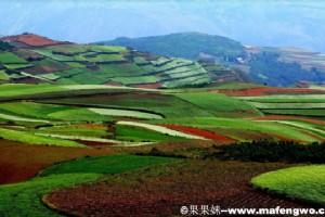 Dongchuan Red Soil