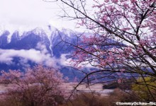 Best Travel Destinations to Visit in March- Nyingchi