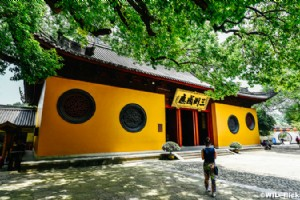 Buddhist Culture in Hangzhou