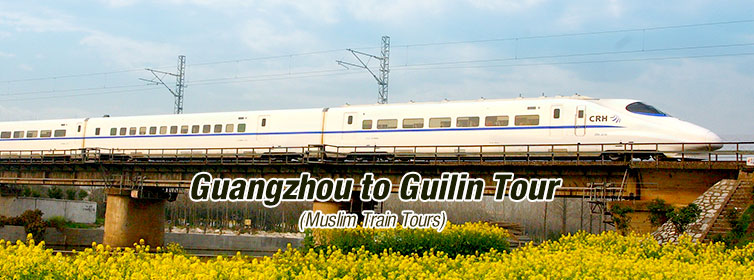Muslim-Train-Tours(m2c-Theme3)