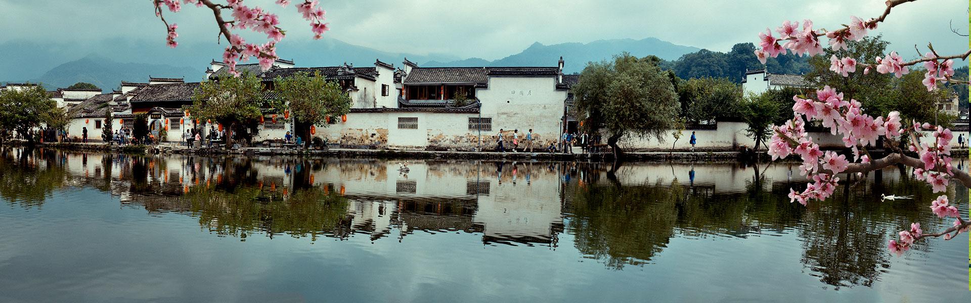 Enjoy the Awakening of Spring in Jiangnan