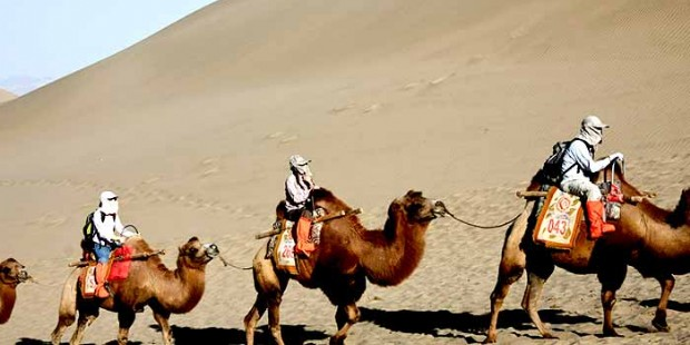 Muslim Silk Road Tour 9 Days Tour