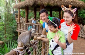 Chimelong Xiangjiang Safari Park
