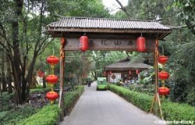 3 Days Essence Shenzhen Muslim Tour