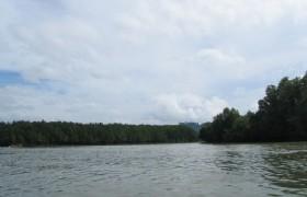 Shenzhen Mangrove Nature Reserve