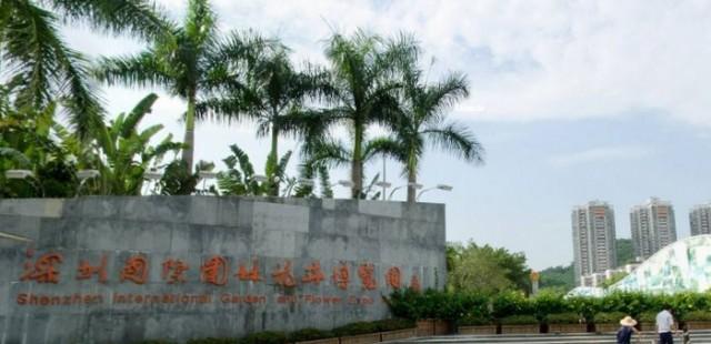 travel guide shenzhen guangdong