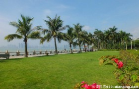 Romantic Zhuhai One Day Tour