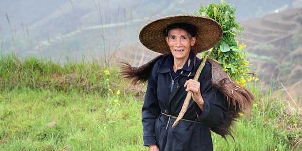 Guilin Essence & Longsheng Short Hiking 5 Days Tour