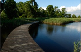Hong Kong Wetland Park Package