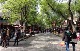 Xian Luoyang 5 Days Muslim Tour (Via AirAsia)