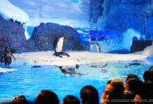 Chengdu Hydron Polar Ocean World