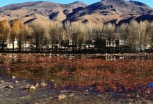 Sangdui Red Grassland