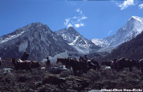 Best of Yunnan and West Sichuan 12 Days Tour