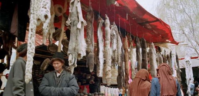 The Sunday Bazaar