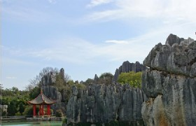1 Day Kunming Stone Forest Tour