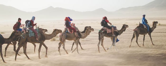 Silk Road Adventure