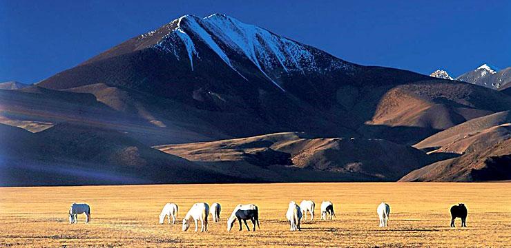 8-Day Lhasa & Mt. Everest Base Camp