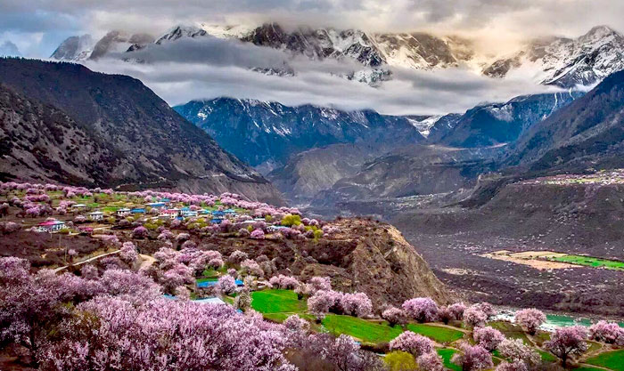 Travelling to Nyingchi in Tibet