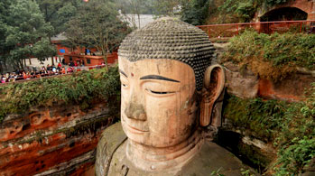 Panda Base & Leshan Giant Buddha 1 Day Join In Tour