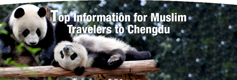 Top-Information-for-Travelers-to-Chengdu