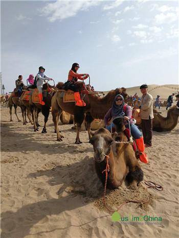 骑骆驼1.jpg
