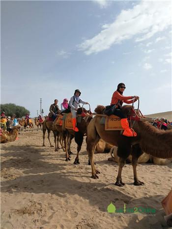 骑骆驼.jpg