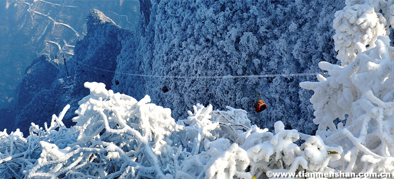 Admire the Winter Scenery of Tianmen Mountain