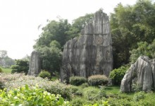 The Magnificent Stone Forest in Kunming