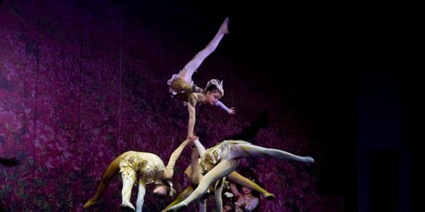 Acrobatics Show in Beijing