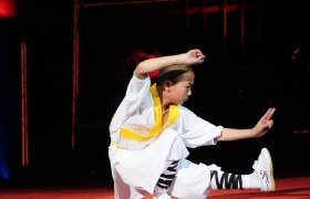 Kungfu Show 3