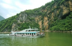 Shennong Stream 1
