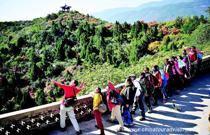 Chong Yang Festival