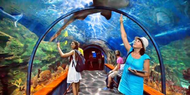 1-Day Singapore SEA Aquarium E-Ticket