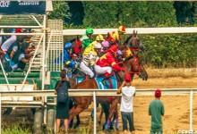 China Equine Cultural Festival