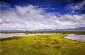 Flower Lake 2