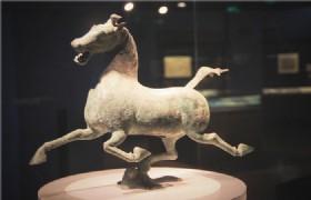 Gansu Provincial Museum 2