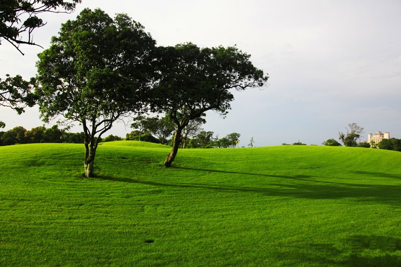 HaiKou Mission Hills Golf  4 Days Tour