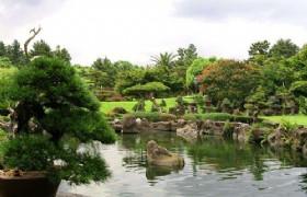 Spirited garden