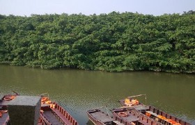 Birds Paradise Park and boat ride in Xinhui