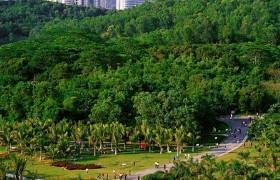 Lotus Hill Shenzhen